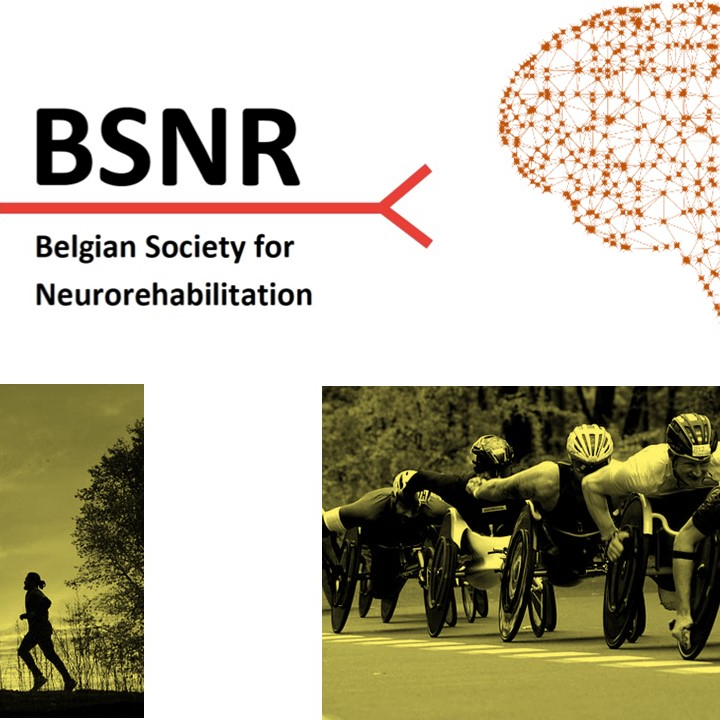 Belgian society for neurorehabilitation (small image)